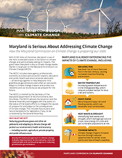 Climate Change fact Sheet in English image link