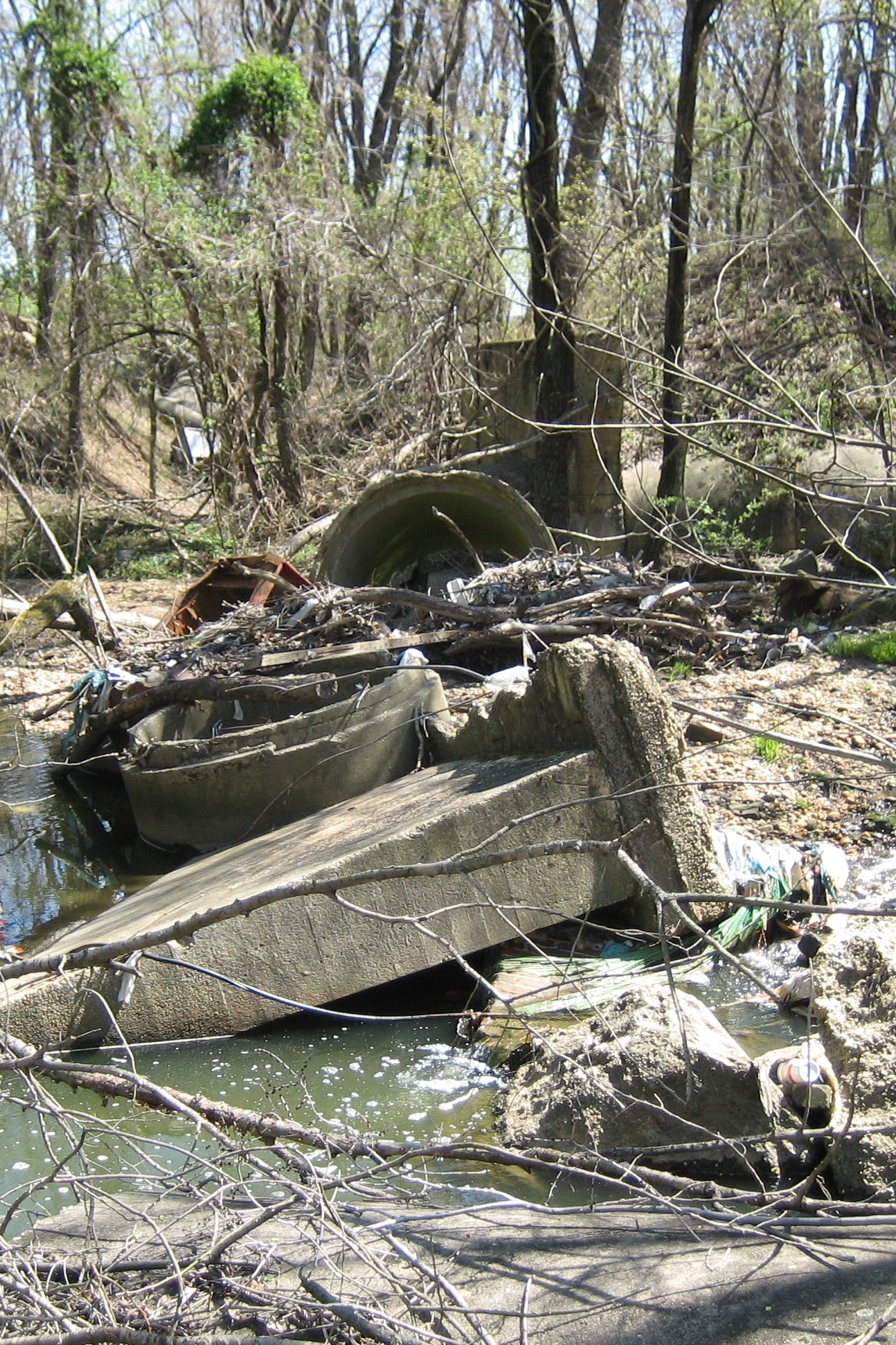 Debris in stream