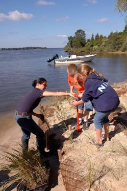 Shoreline Restoration Project