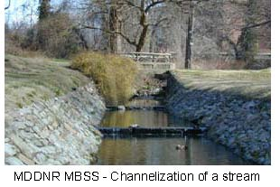 picture of channelization of stream