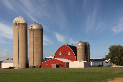 Farm with grain silos