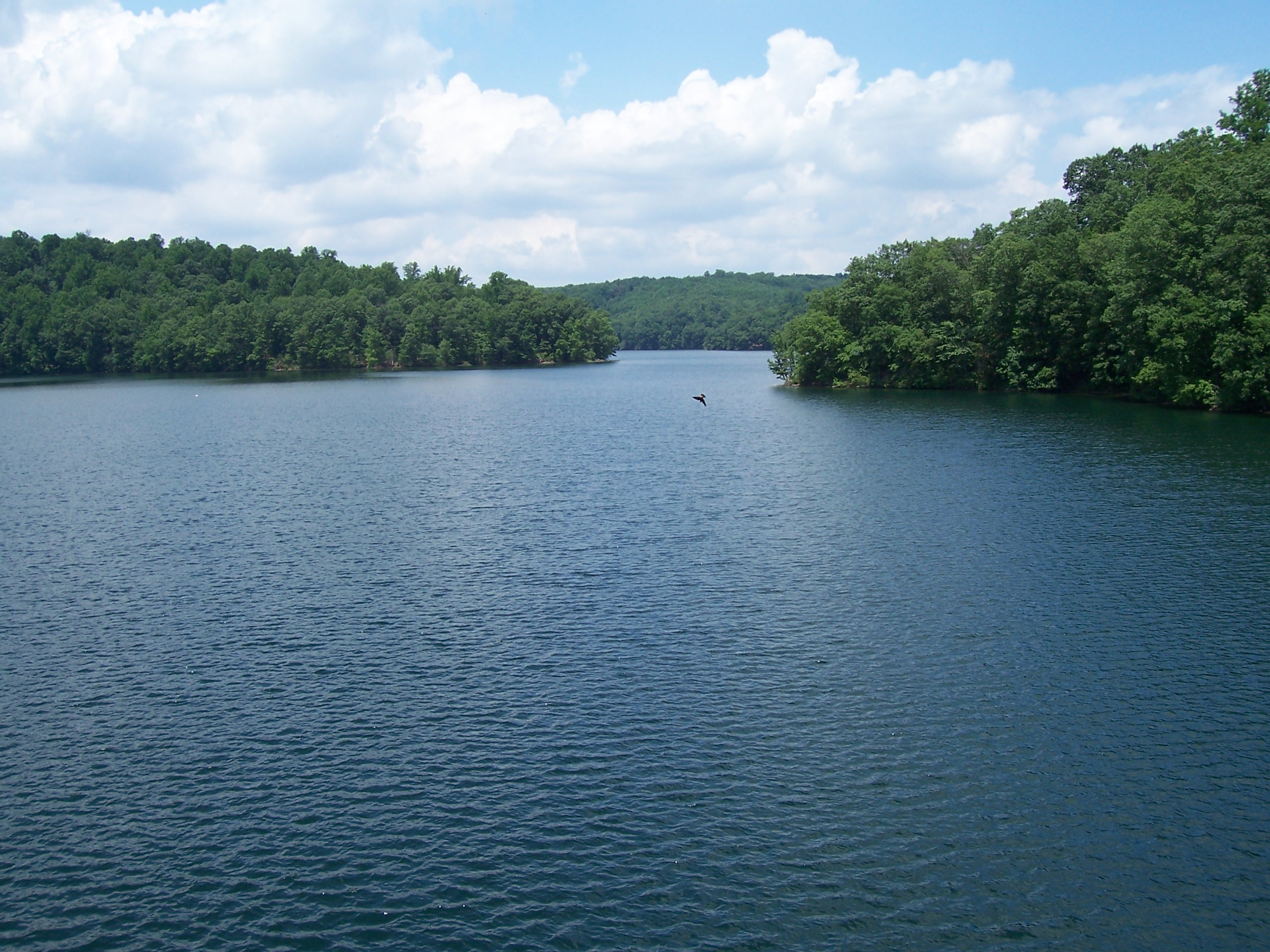 Picture of lake surface from Pretty Boy dam
