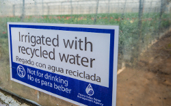 Irrigated with recycled water sign in from of greenhouse.