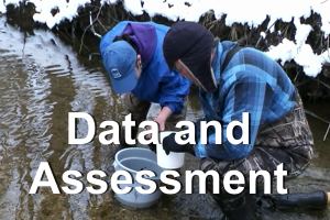 Data and Assessment